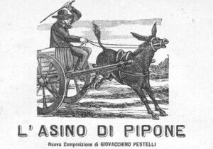 Asino_di_pipone_r_inv.d664922